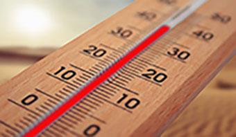 Die Hitzewelle